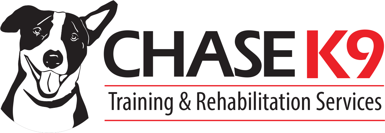 Chase K9 Training & rehabilitation services Dogs